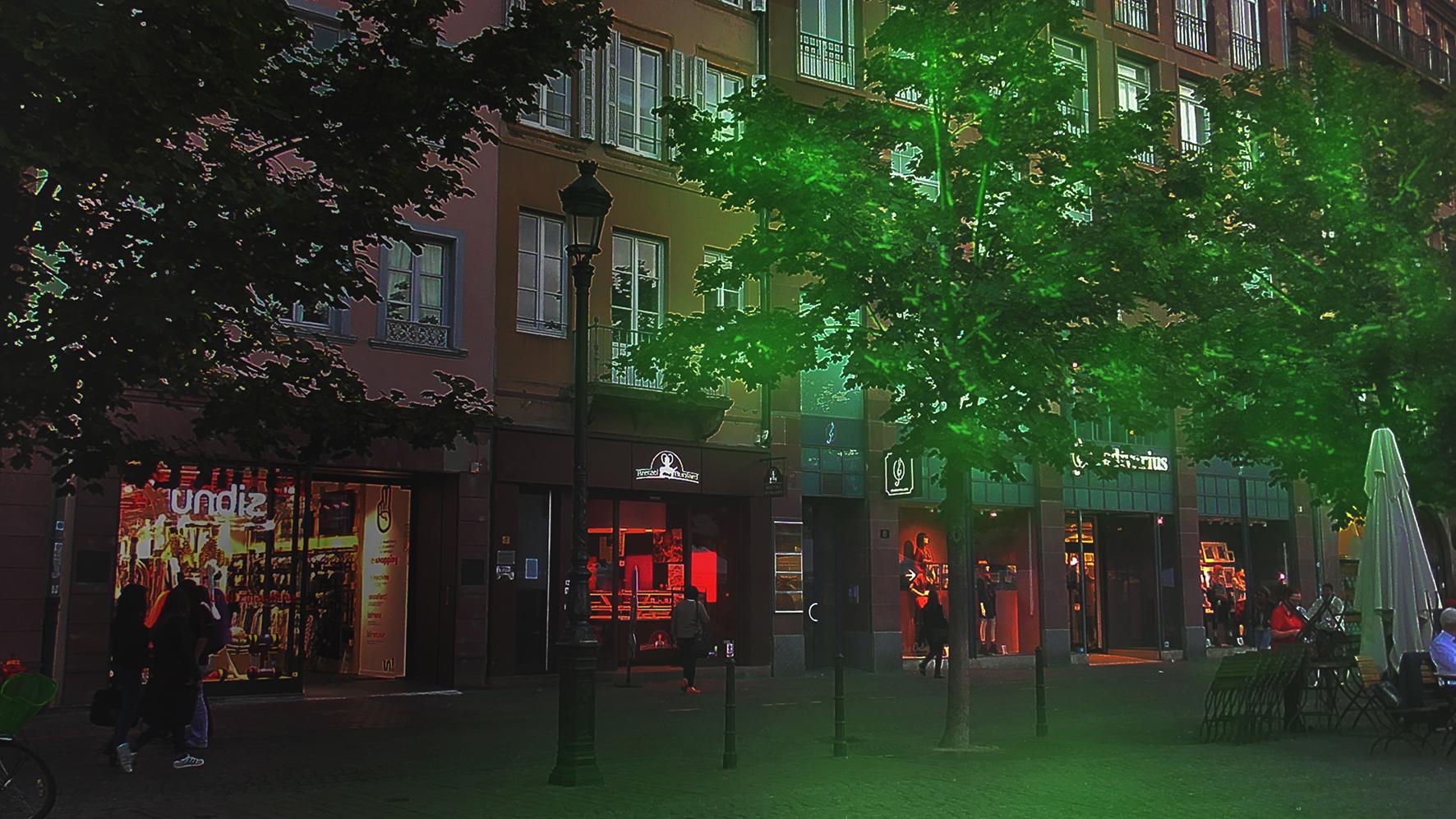 vue d'éclairage urbain strasbourg Woodlight greenovation luminescence bioluminescence plante arbre végétaux luminescent éclairage alternatif végétal vert lumineux lumière luciole fluoresente autoluminescence balisage balise innovation génétique biotechnologie appliquées Recherches & Développement R&D Biomimétisme Cultivons la lumière de demain Biolumière luciférase ville futur écologique écologie avenir aménagement durable bioéclairée urbain surconsommation énergétique solution verte innovation végétalisation urbaine biotech vertes réduction énergétique Développement durable Dépollution Plantes dépolluantes Lampadaire végétal électricité verte décoration originale design évènementiel