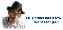 Remus' wood pile report