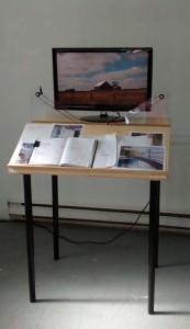 Lise's Art Installation