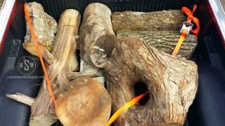 Wood Haul