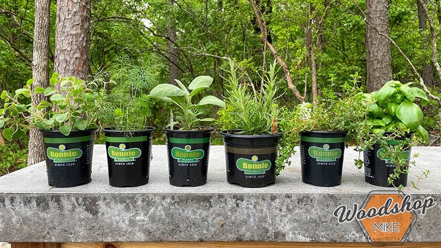 Bonnie herbs Outdoor Oasis