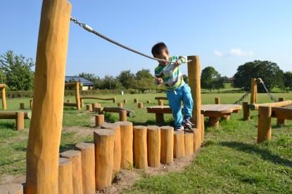 Organisk plattform i balansbana-Woodwork AB