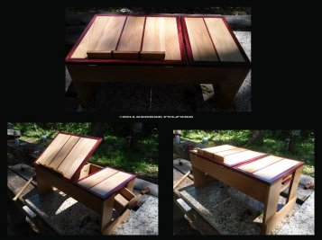 Laptop Desk by George Fulford