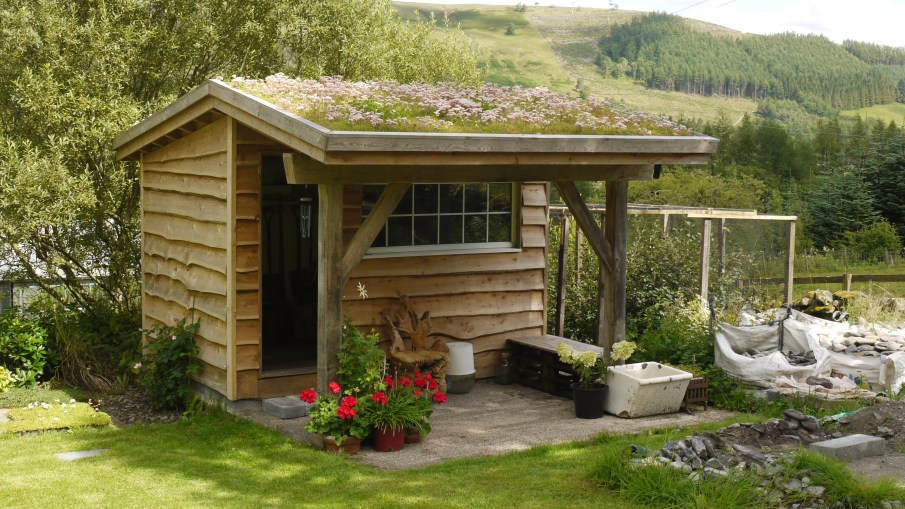 Garden Shed with Green Roof by Ian Lambert