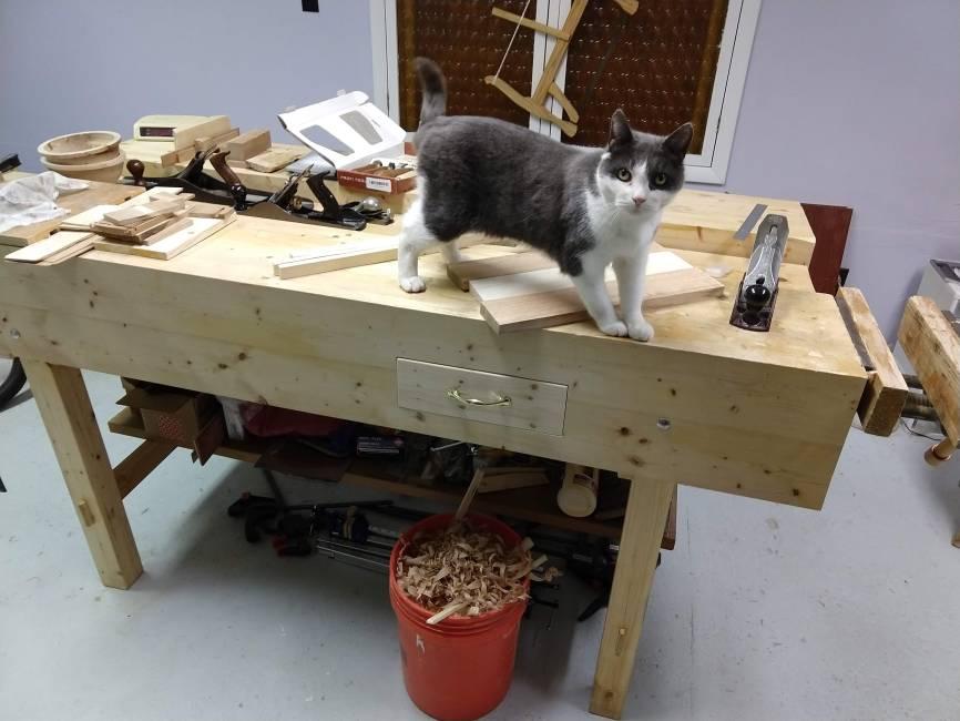 Workbench by floren