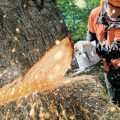 best chainsaw for wood cutting