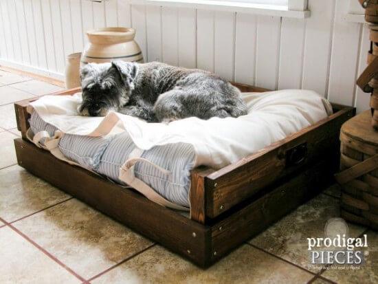 Larissa's DIY Pet Bed Tutorial