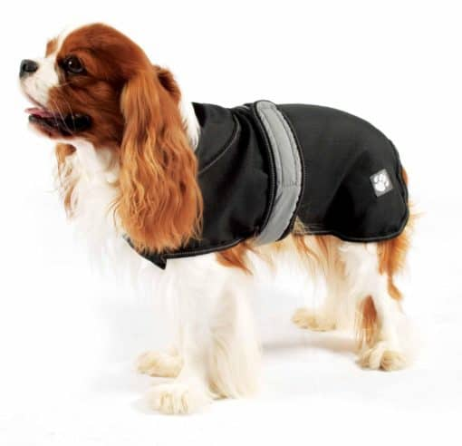 2 in 1 Ultimate Dog Coat in Black