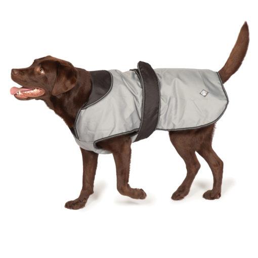 Dog Coat 2 in 1 - Grey
