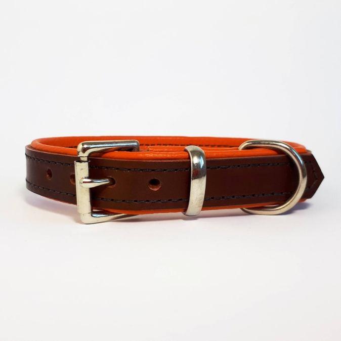 Brown on Orange Padded Dog Collar