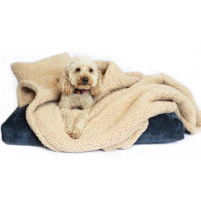 NORDIC - OPULENCE CUSHION DOG BED SET