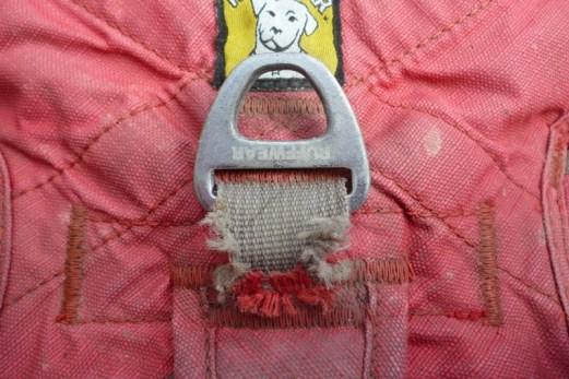 ruffwear webmaster harness wear