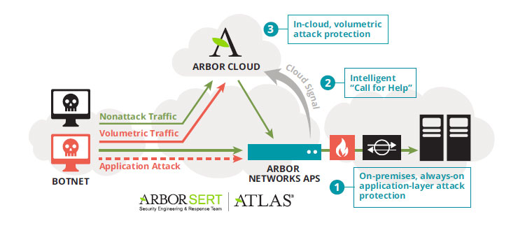 arbor-on-premise-protection