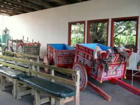 Traditional ox-drawn coffee carts