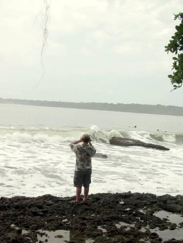 My Fiasco, surveying the waves.