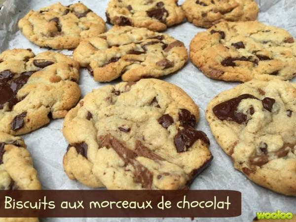 Biscuits aux morceaux de chocolat