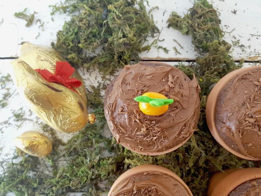 petits gâteaux Jardin wooloo