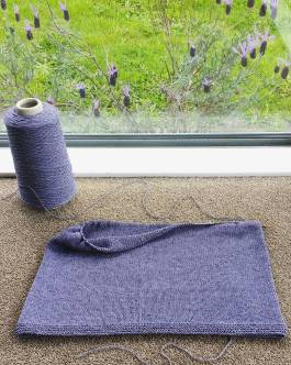 Waterlily - when you realise that the flowers outside your window are the same colour as your knitting project