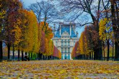 A colorful path to the Louvre