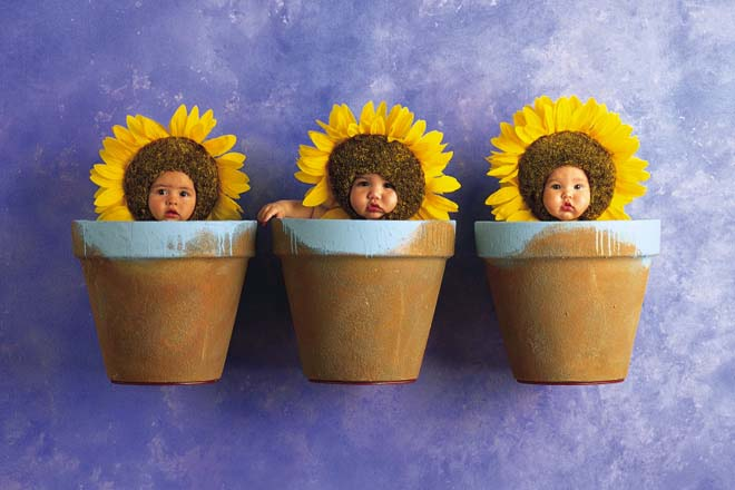 anne geddes babies2 Babies Come as Three Angels by Anne Geddes