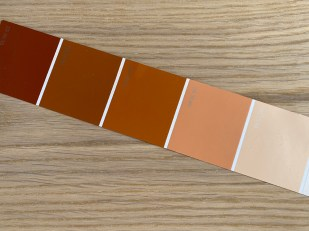 monochromatic color palette