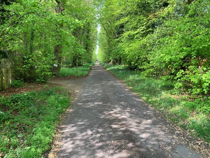 wootton parish foxcombe drive 2 w