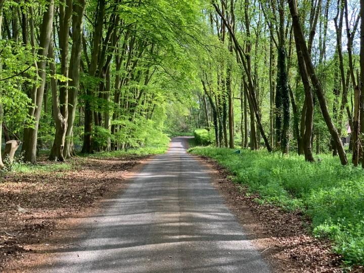 wootton parish lincombe lane 3 w