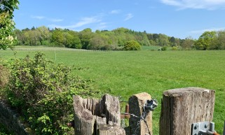 wootton parish old boars hill fence w