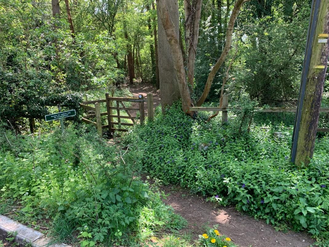 wootton parish tommys heath footpath 3 w