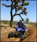 2010-rnd4-worcs-racing-04-dustin-nelson-yfz450r-atv-joshua-tree-210