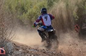 2012-mesquite304-500x331