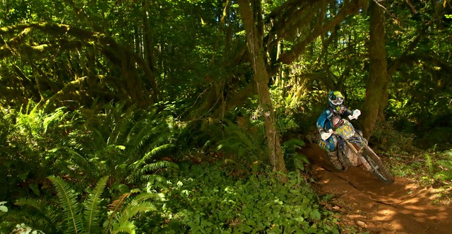 2014-07-ricky-russell-worcs-woods