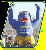WORCS Gorilla