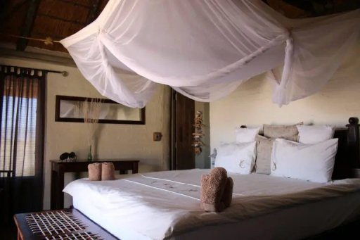 A mosquito net covering a king-sized bed