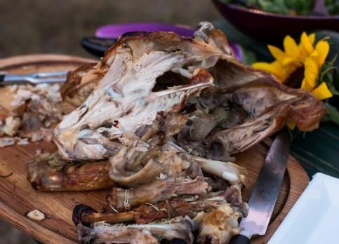 florida-family-farm-thanksgiving-1521