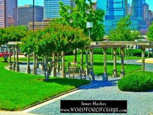 If you visit the Harbor and park on the Federal Hill side you are greeted with this beautiful sight as you enter the Harbor area.