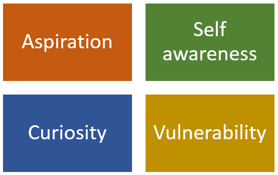 Aspiration Self-awareness Curiosity Vulnerability