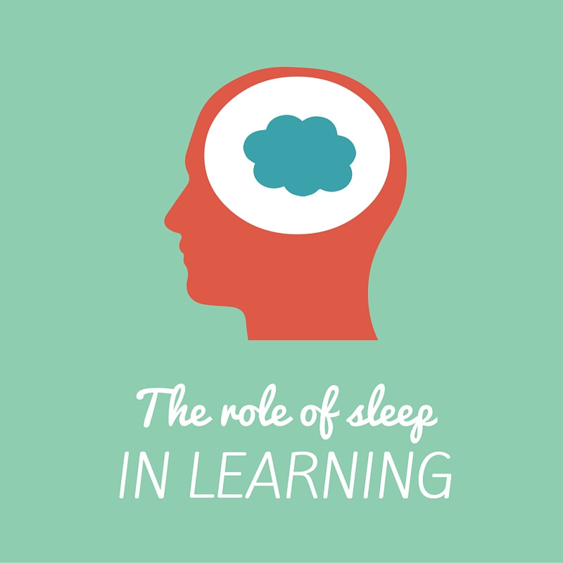 The role of sleep in learning