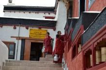 Thickse Monestary, Ladakh