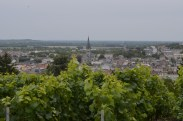 View from the Vineyards in Epernay.