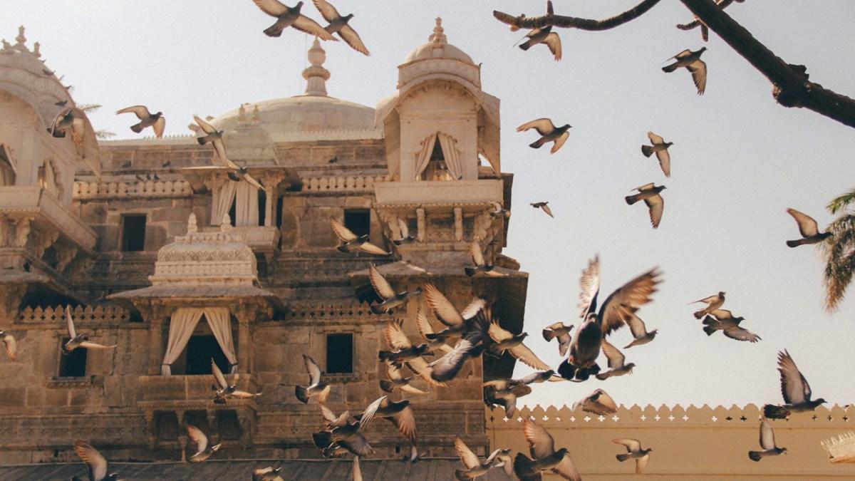 udaipur-c