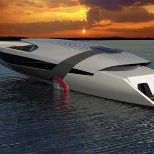 Tesla Yacht Model Y