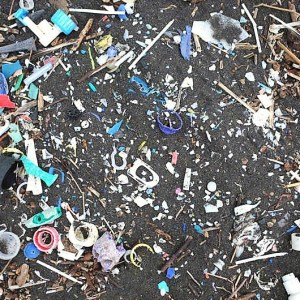 Increase in Plastic waste reaching remote South Atlantic Islands
