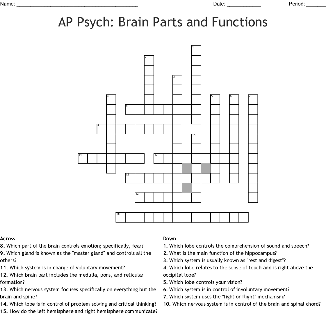 Parts Of The Brain Worksheet Psychology