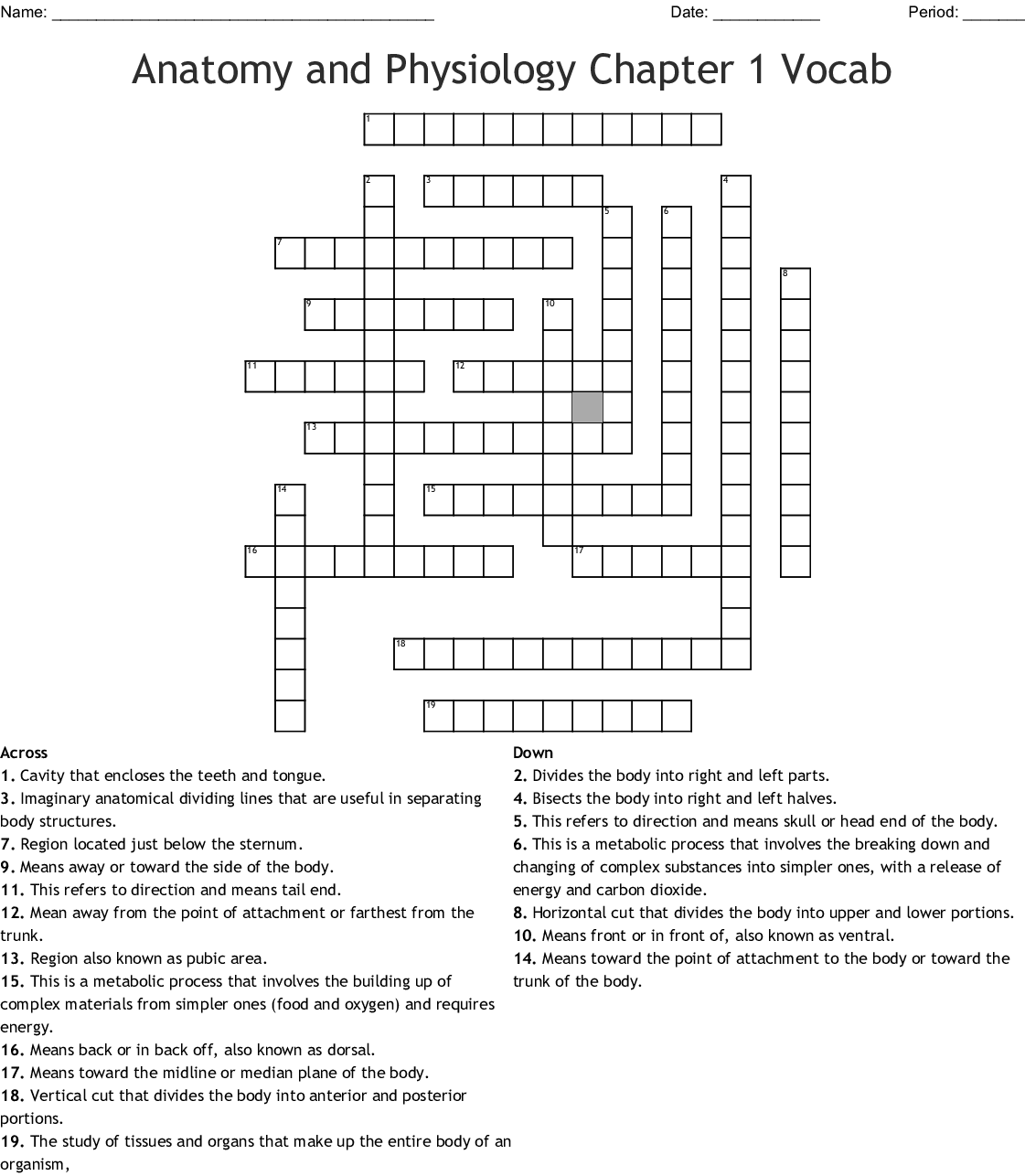 Anatomy And Physiology Chapter 1 Vocab Crossword