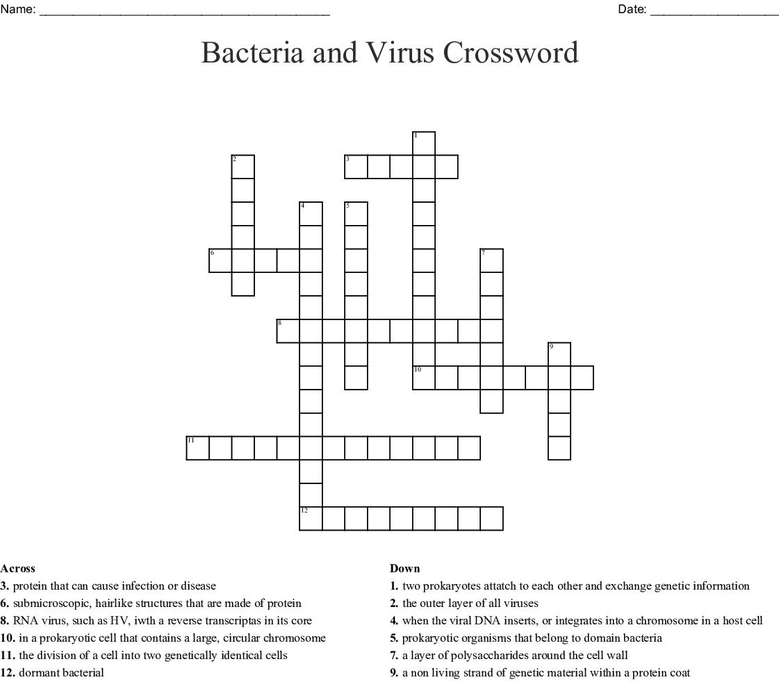 Vocabulary Crossword