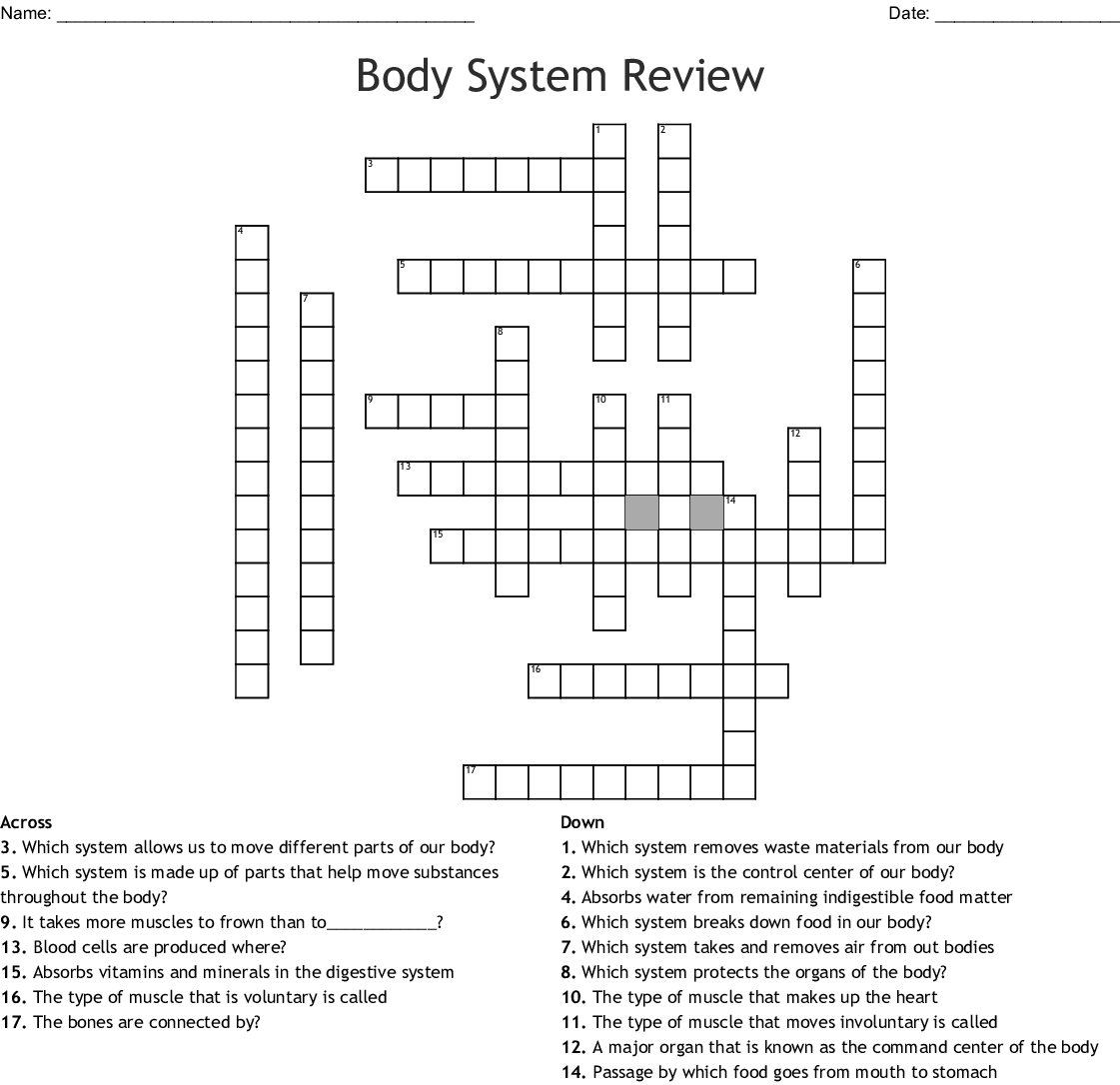 Human Body Systems Crossword Puzzle