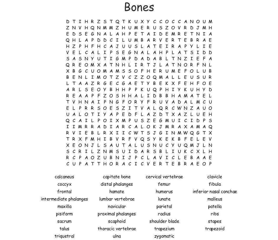 Bones Bones Bones Word Search