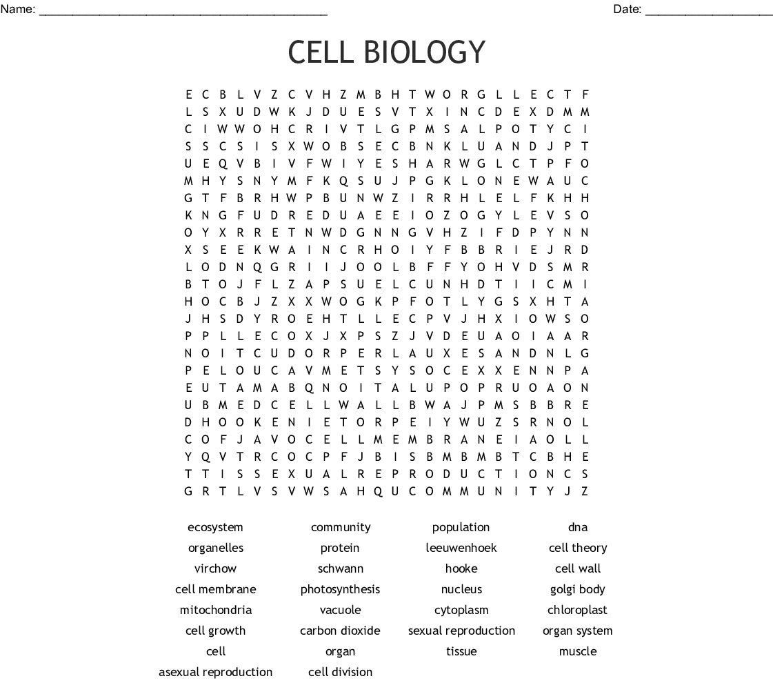 Cell Biology Word Search