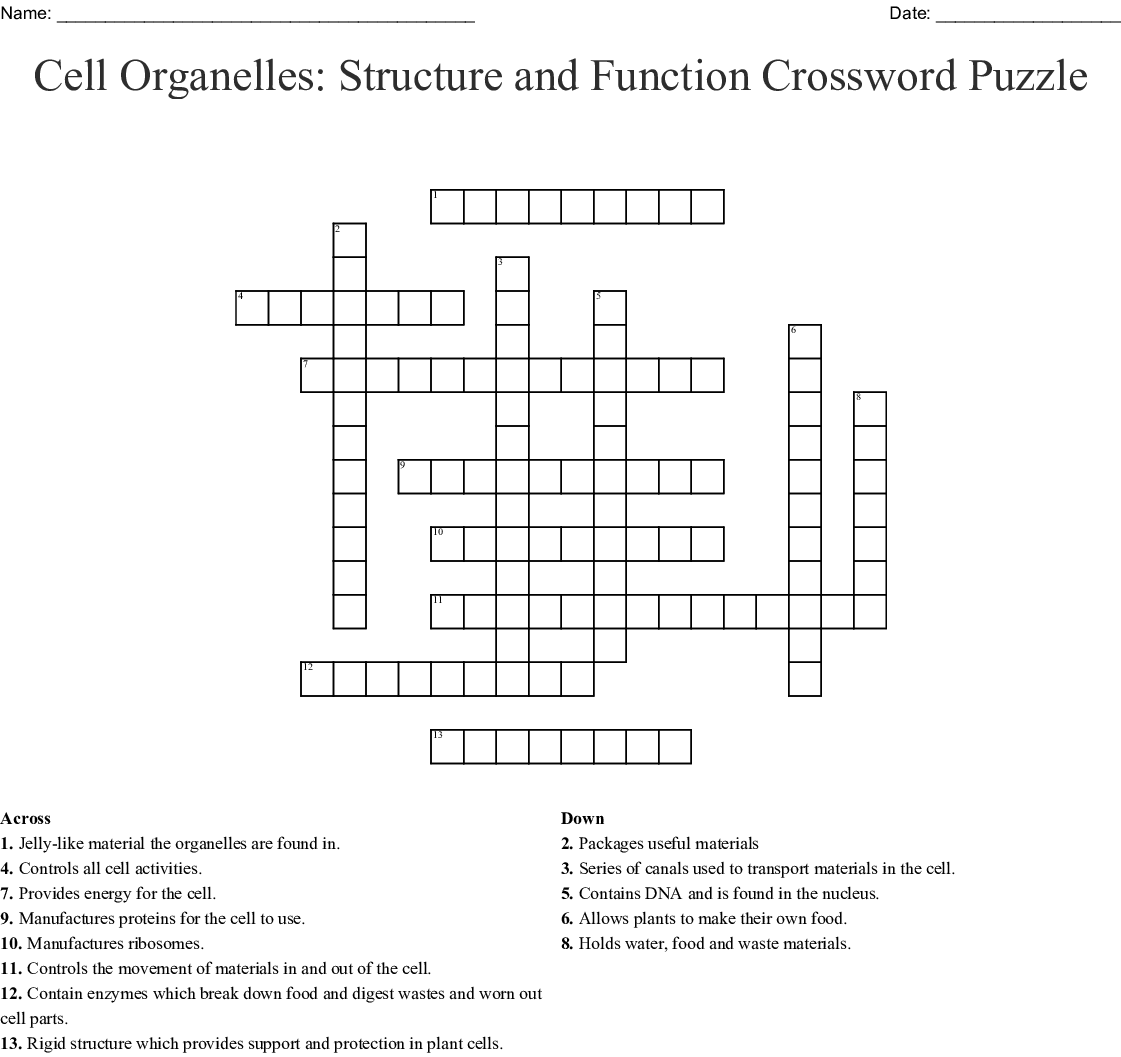 Cell Organelles Structure And Function Crossword Puzzle